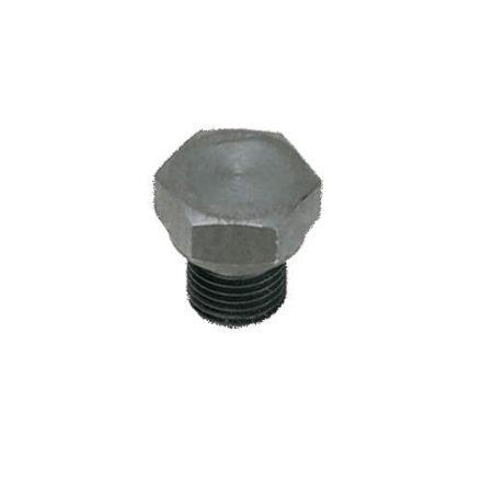 Legris 0210 Hexagon Head Plug